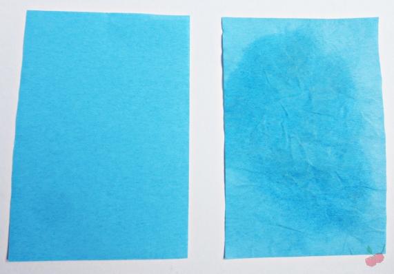 lenços removedores de oleosidade ricca